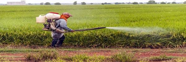 कृषि रसायन का उपयोग