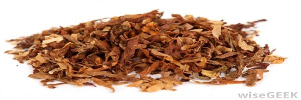 tobacco economy