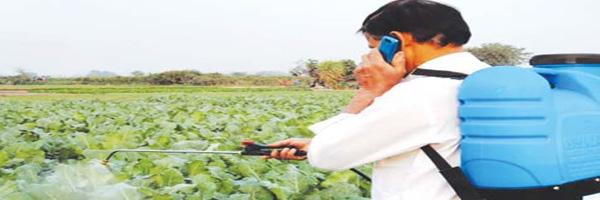 पौध संरक्षण में अपनायें देशी उपाय