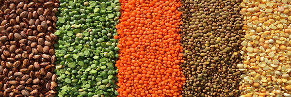 varieties of pulses