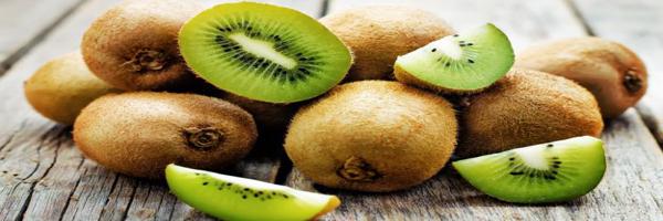 Kiwi Fruit Cultivation Kisan Suvidha
