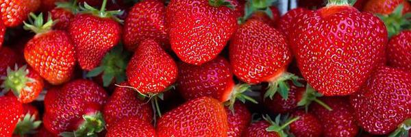 himalayan strawberry