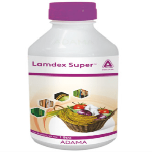 Lamdex Super