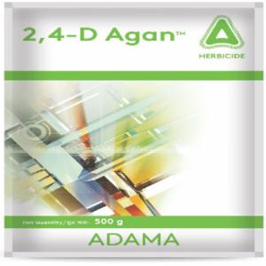 2 4 D agan adama