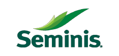 seminis vegetable seed india ltd