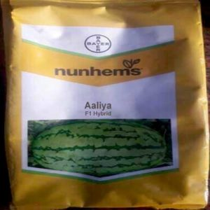 Aaliya watermelon seed
