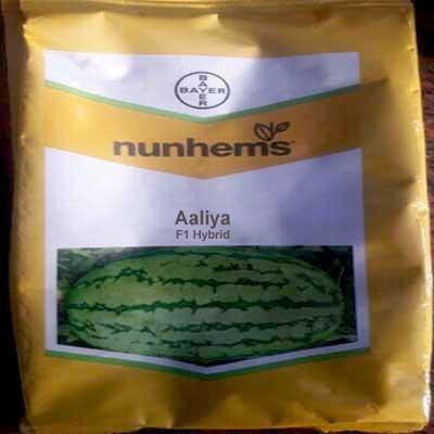 Aaliya watermelon seed