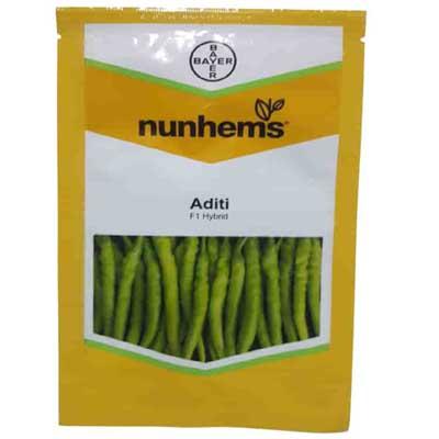 Aditi Chilli seed