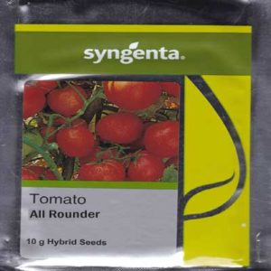All Rounder Tomato Seeds