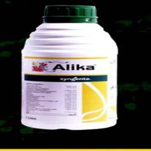 alika insecticide